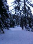 Route des Frasses: running through a winter wonderland