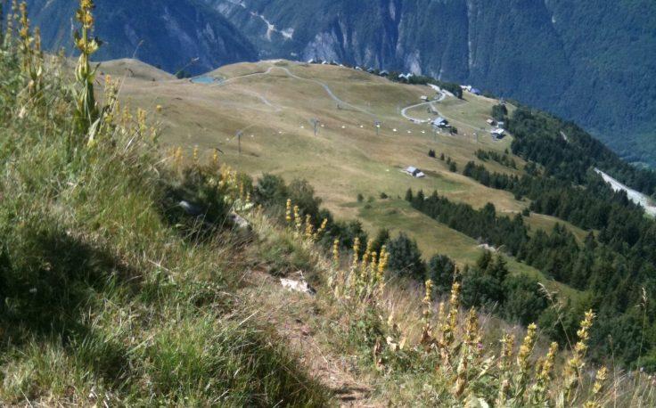 Trailrunning - the slopes above Alpe d'Huez